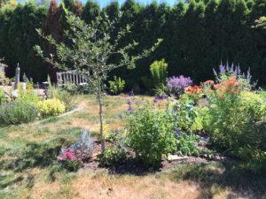kathleens garden